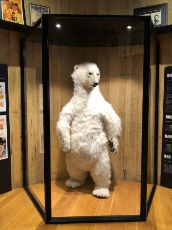 The Bundaberg Bear