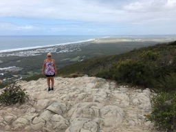the view from Mount Coolum looking south